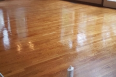 wood refinisher application