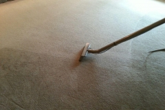 Carpet cleaning Justin
