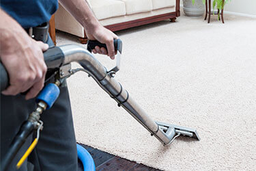 Carpet Cleaning, Repair