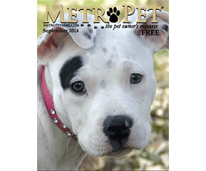 Metro Pet Magazine